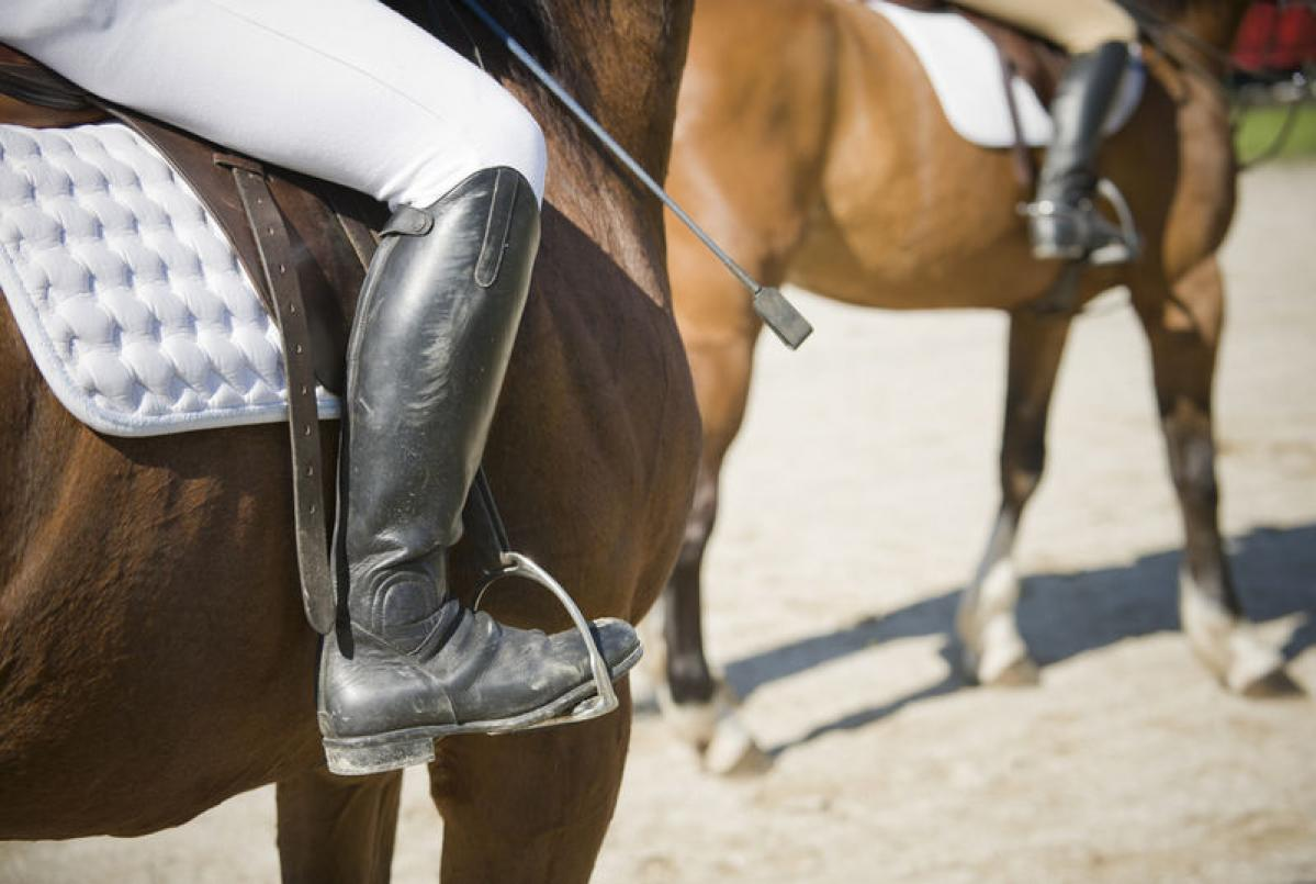 What's The Difference Between English and Western Riding?
